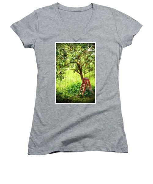 Hobbit Pear Tree Women's V-Neck