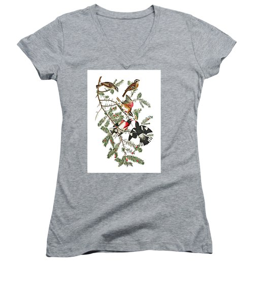 Women's V-Neck T-Shirt (Junior Cut) featuring the photograph Holiday Birds by Munir Alawi