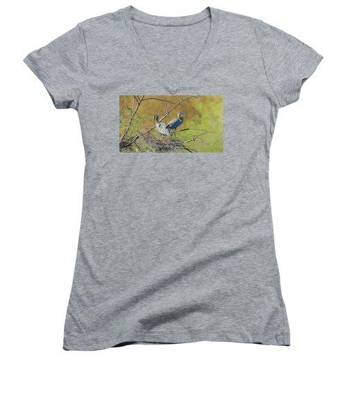 Home Town Blues Women's V-Neck T-Shirt (Junior Cut) by Kelly Marquardt