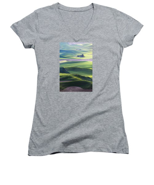Homestead In The Hills Women's V-Neck T-Shirt (Junior Cut) by Ryan Manuel
