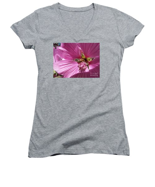 Honey Bee Women's V-Neck T-Shirt
