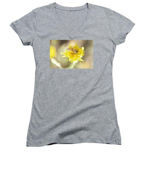 Honeybee Women's V-Neck T-Shirt (Junior Cut) by Nikki McInnes