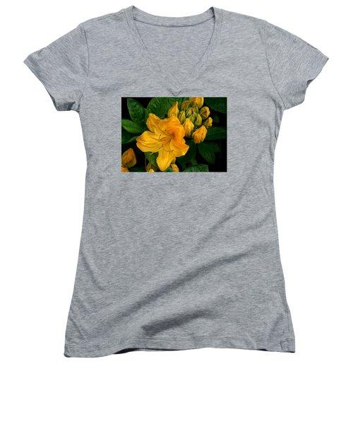 Honeysuckle Azalea Women's V-Neck T-Shirt (Junior Cut) by Karen Molenaar Terrell