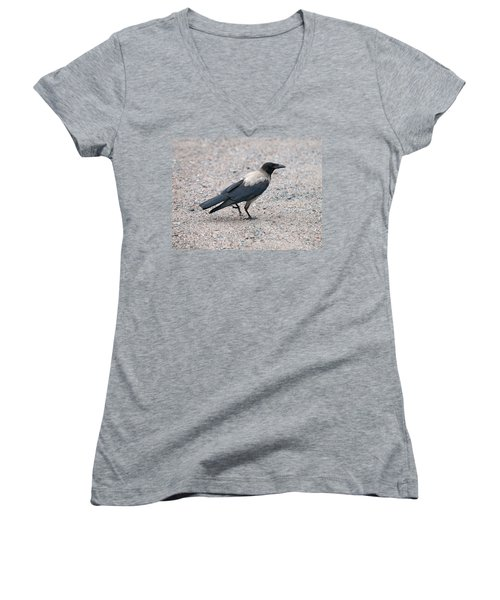 Women's V-Neck T-Shirt (Junior Cut) featuring the photograph Hooded Crow by Jouko Lehto