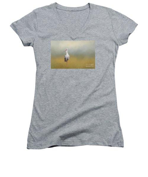 Hope Of Spring Women's V-Neck T-Shirt