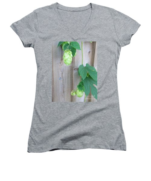Hops On Fence Women's V-Neck (Athletic Fit)