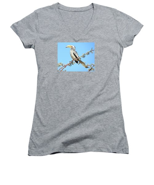 Hornbill In Thorn Tree Women's V-Neck T-Shirt