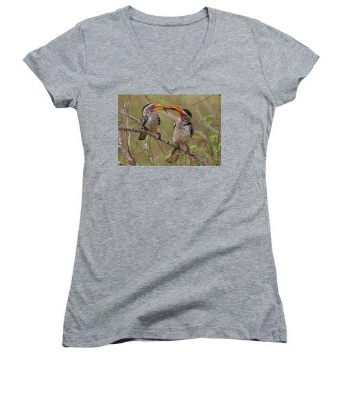 Hornbill Love Women's V-Neck T-Shirt