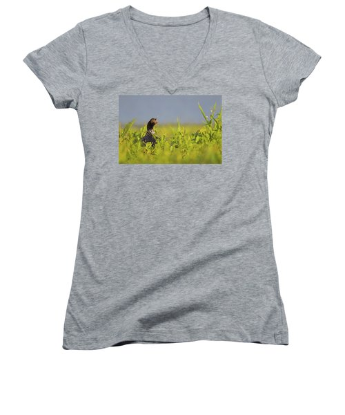 Horned Screamer Women's V-Neck T-Shirt