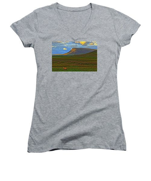 Women's V-Neck T-Shirt (Junior Cut) featuring the photograph Horse And Sky by Scott Mahon