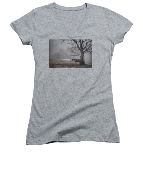 Women's V-Neck T-Shirt (Junior Cut) featuring the photograph Horse And Tree by Sumoflam Photography
