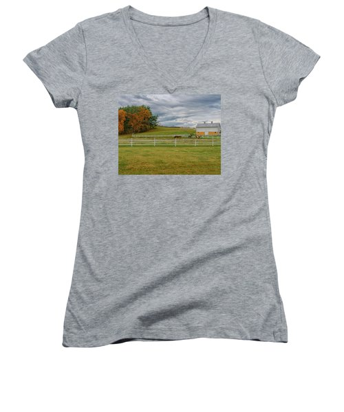 Horse Barn In Ohio  Women's V-Neck (Athletic Fit)