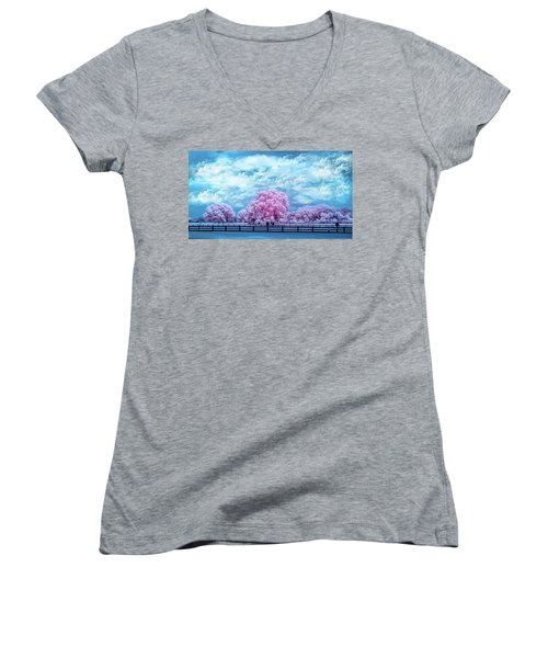 Women's V-Neck T-Shirt (Junior Cut) featuring the photograph Horse Country In Pink by Louis Ferreira