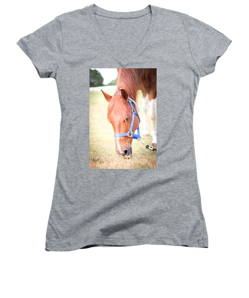 Horse Eating In A Pasture In Vibrant Color Women's V-Neck