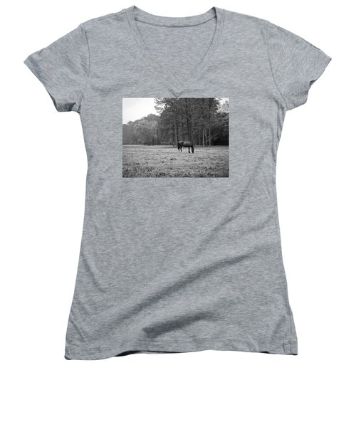 Horse In Pasture Women's V-Neck (Athletic Fit)