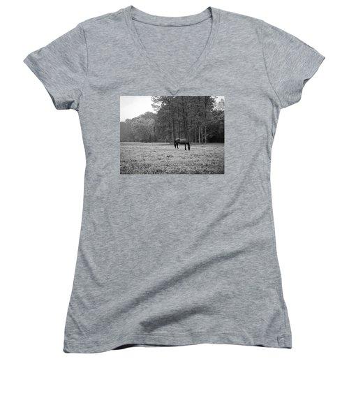 Horse In Pasture Women's V-Neck T-Shirt