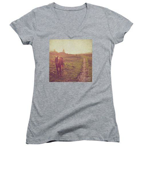 Horse Women's V-Neck T-Shirt (Junior Cut) by Lyn Randle