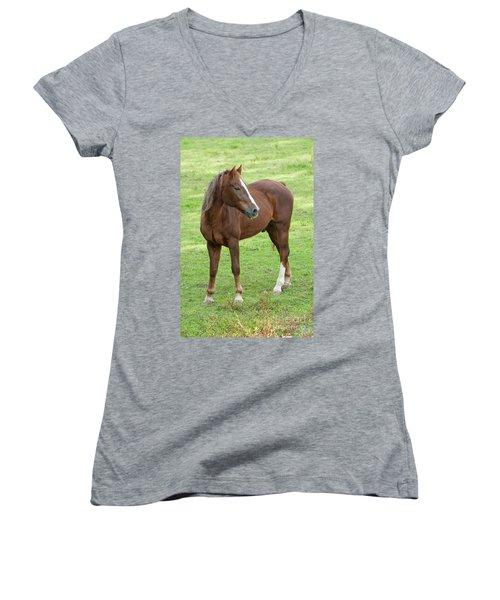 Horse Women's V-Neck