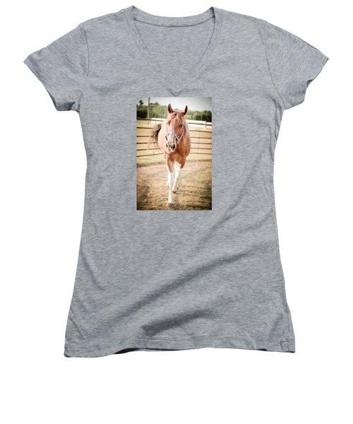 Horse Walking Toward Camera Women's V-Neck T-Shirt (Junior Cut) by Kelly Hazel