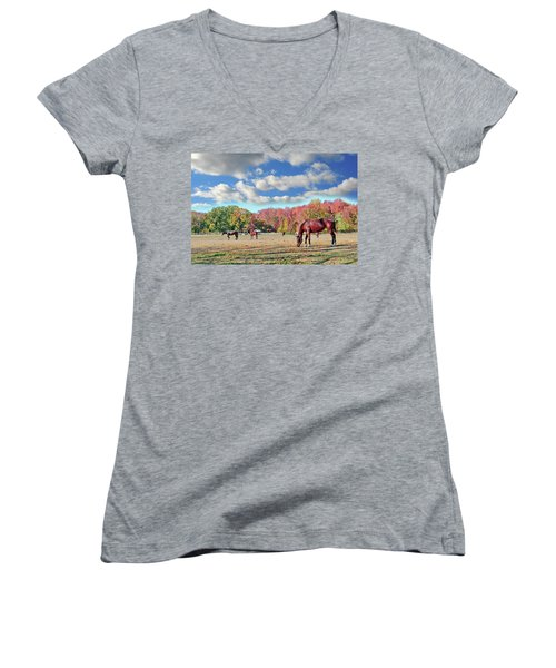 Horses Grazing At A Stable In Maryland Women's V-Neck