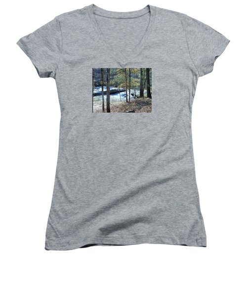 Horseshoe Falls Women's V-Neck T-Shirt (Junior Cut) by Kay Gilley