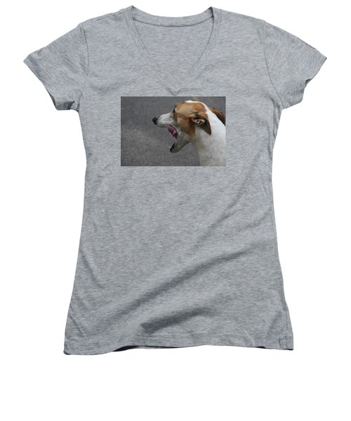 Hound Portrait Women's V-Neck T-Shirt (Junior Cut) by Vadim Levin