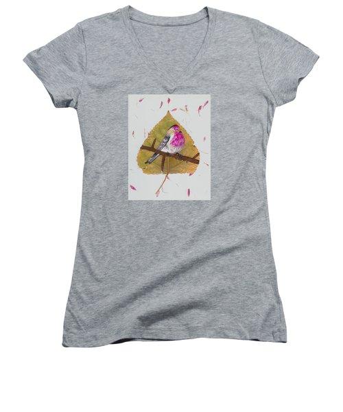 House Finch Women's V-Neck T-Shirt (Junior Cut) by Ralph Root
