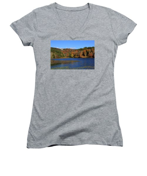 House In The Mountains Women's V-Neck (Athletic Fit)