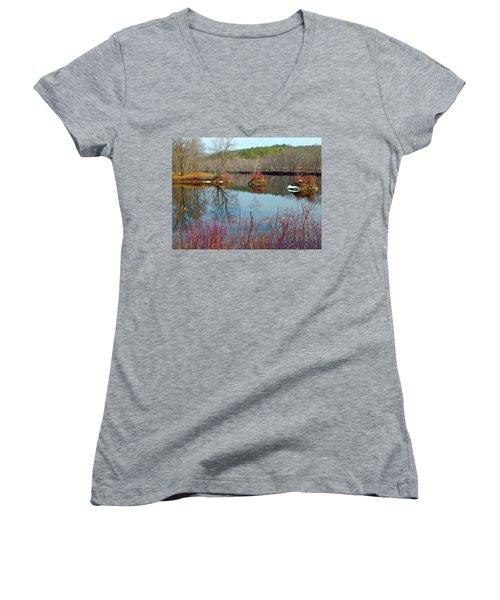 Housesitting 41 Women's V-Neck T-Shirt (Junior Cut) by George Ramos