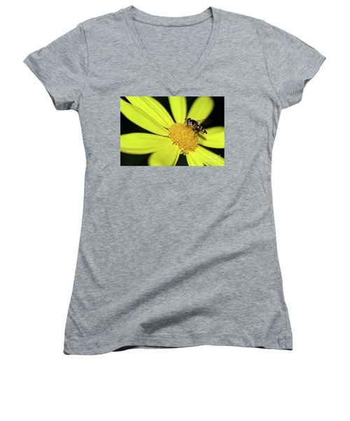 Women's V-Neck T-Shirt featuring the photograph Hoverfly On Bright Yellow Daisy By Kaye Menner by Kaye Menner