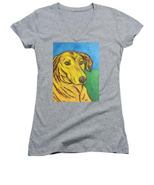 Howard Women's V-Neck T-Shirt (Junior Cut) by Victoria Lakes