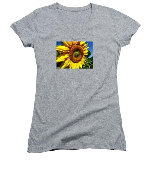 Huge Bright Yellow Sunflower Women's V-Neck T-Shirt (Junior Cut) by Tina M Wenger