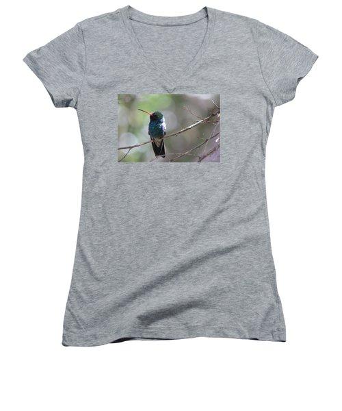 Women's V-Neck T-Shirt (Junior Cut) featuring the photograph Hummer by Kathy Bassett