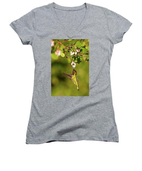 Hummingbird And Manzanita Blossom Women's V-Neck (Athletic Fit)