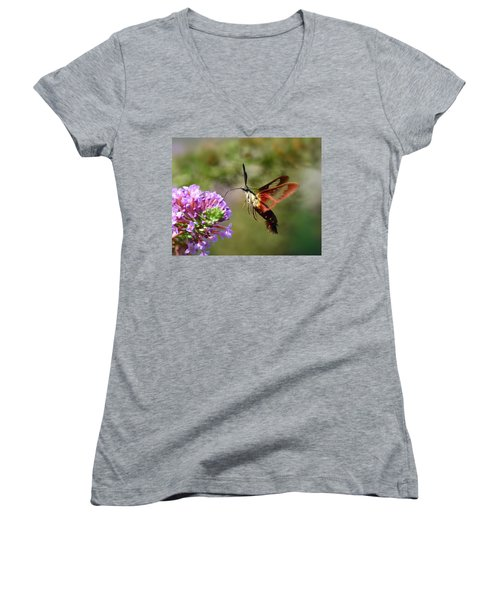 Hummingbird Clearwing Moth Women's V-Neck (Athletic Fit)