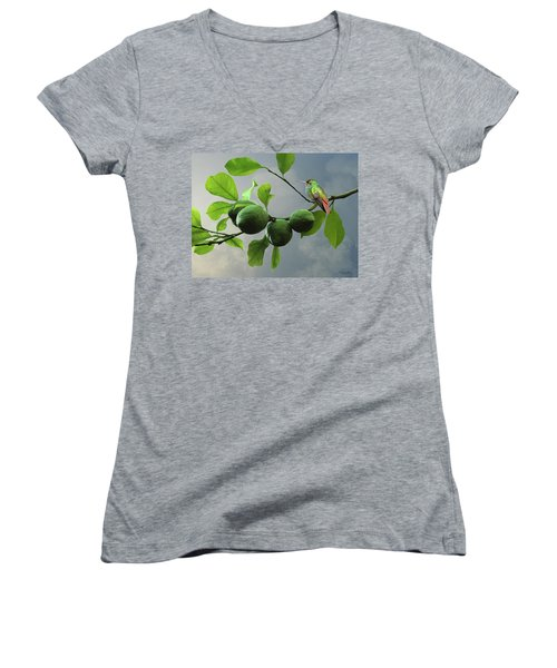 Hummingbird In Lime Tree Women's V-Neck (Athletic Fit)