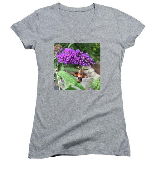 Hummingbird Moth Women's V-Neck