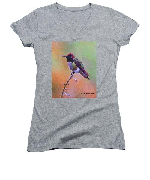 Hummingbird On A Stick Women's V-Neck T-Shirt (Junior Cut) by Tom Janca