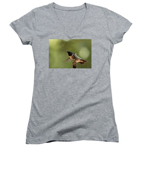 Hummingbird Take-off Women's V-Neck (Athletic Fit)