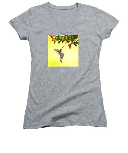 Hummingbird Under The Floral Canopy Women's V-Neck