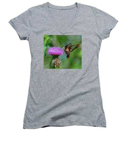 Hummingbirdbird Moth Dining Women's V-Neck (Athletic Fit)