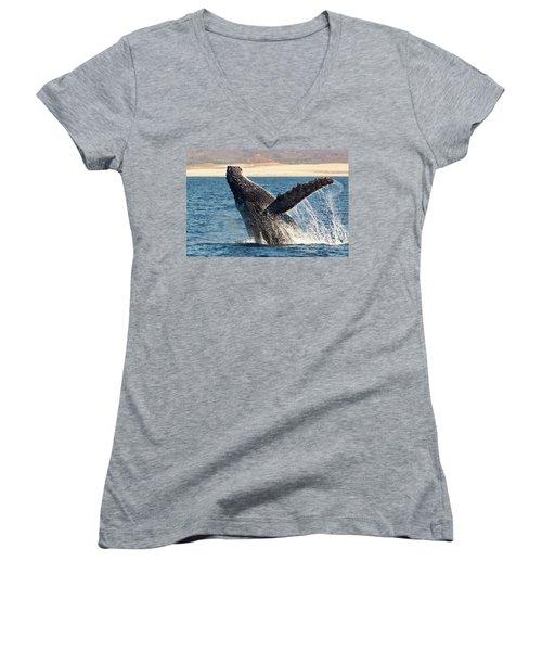 Humpback Whale Breaching Women's V-Neck