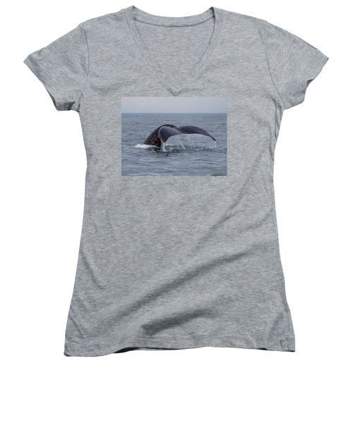 Humpback Whale Women's V-Neck T-Shirt (Junior Cut) by Trace Kittrell