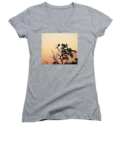 Hush Little Baby Women's V-Neck T-Shirt (Junior Cut) by John Glass