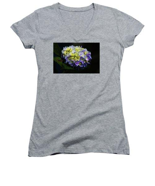 Hydrangea 3705 H_2 Women's V-Neck T-Shirt