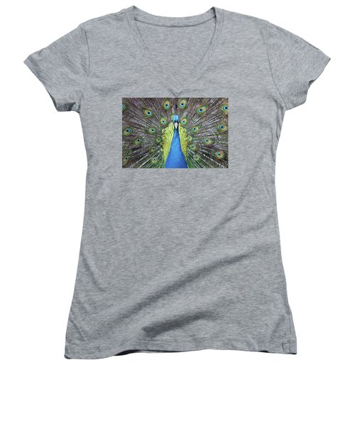 Hypnotic Women's V-Neck