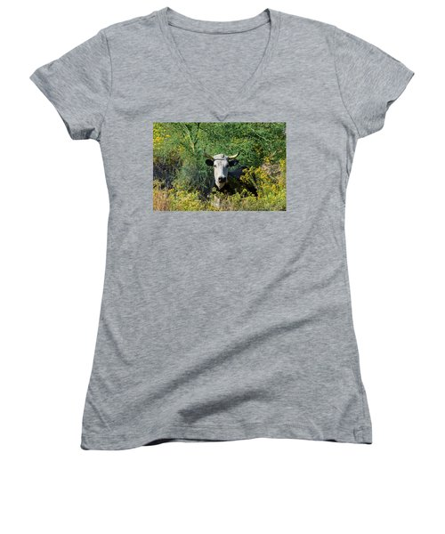 I Picked These For Moo Women's V-Neck
