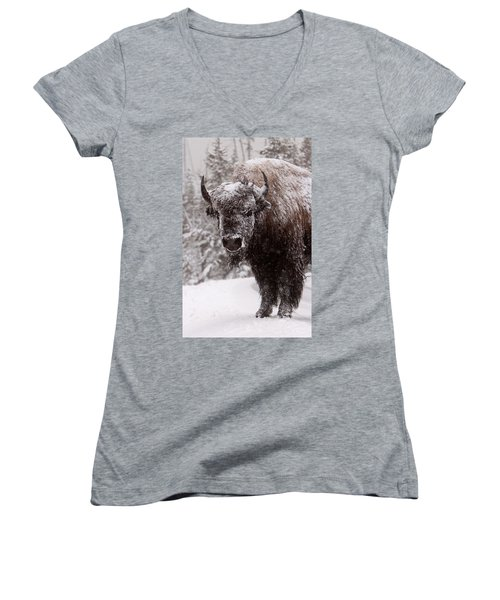Ice Cold Winter Buffalo Women's V-Neck (Athletic Fit)