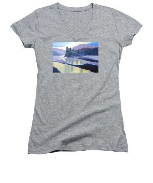 Ice Floes Women's V-Neck (Athletic Fit)