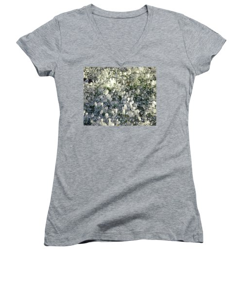 Ice On The Lawn Women's V-Neck (Athletic Fit)